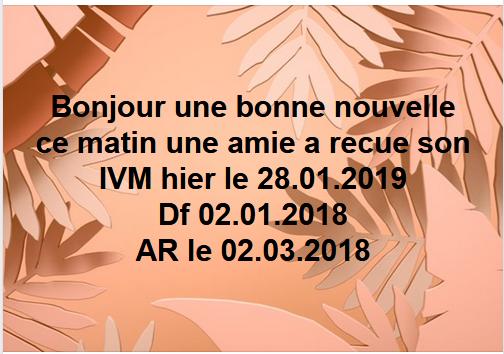 ivm janvier.png